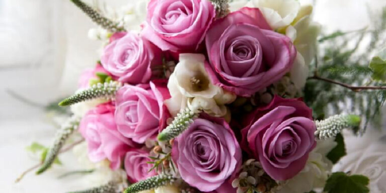 Visit Milford on Sea New Seasons wedding flowers